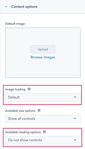 Lazy loading controls in the Design Manager
